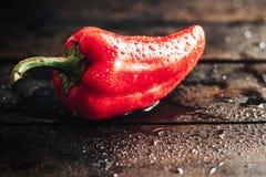 Één rode groene paprika met dalingen van water op houten achtergrond Royalty-vrije Stock Fotografie