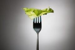 Één slablad op een verticale vork Royalty-vrije Stock Foto's