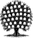 Één Stamboom van de Kleur. De portretten zijn Gescheiden. royalty-vrije illustratie