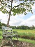 Één stoel Royalty-vrije Stock Fotografie
