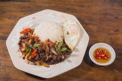 Één Thais voedsel van de schotelmaaltijd Royalty-vrije Stock Fotografie