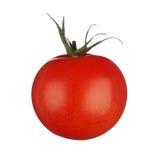 Één tomaat die op witte achtergrond wordt geïsoleerdd Stock Afbeelding