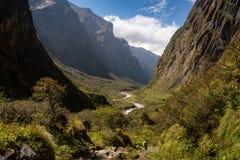 Één trekker die door gletsjervallei lopen in Annapurna-de trekking van het Basiskamp stock fotografie