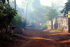Één van de dag van de leuke en speelse hond in de zon Het dorp was stil stock afbeeldingen