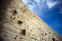 De loeiende Muur Stock Foto's