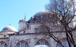 Één van de moskees in Istanboel, Turkije Stock Afbeeldingen
