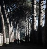 Één van de wegen van Pompei royalty-vrije stock foto's