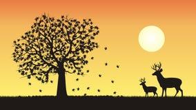Één van vier seizoenen - daling, de herfstvector Stock Foto's