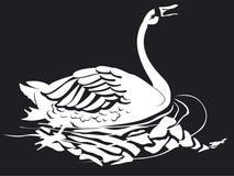 Één zwaan opent zijn bek stock illustratie