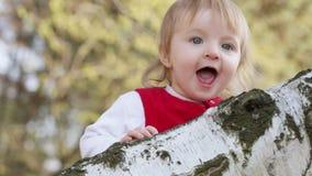 Éénjarigenkind op berk stock footage