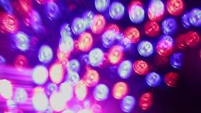 闪烁对俱乐部光音乐  股票视频