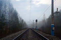 铁路、红灯和电杆在雾 免版税库存照片