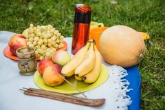野餐背景与白葡萄酒和夏天在绿草结果实 免版税库存照片