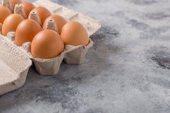 配件箱在卵黄质里面的被中断的鸡蛋鸡蛋 有用的产品-很多钙和蛋白质 库存图片