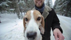 逗人喜爱的年轻行家夫妇获得乐趣在有他们的狗的冬天公园一明亮天和微笑 演奏妇女的人 股票视频