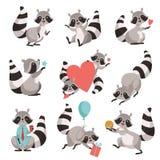 逗人喜爱的浣熊集合,滑稽的动物卡通人物用不同的情况导航例证 库存例证