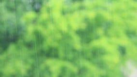 É chover exterior no parque filme