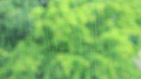 É chover exterior no parque video estoque