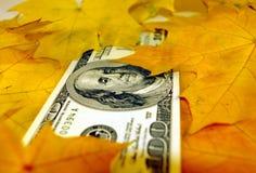 É queda do dólar? imagens de stock royalty free