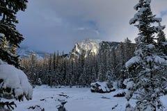 É tempo de inverno! foto de stock
