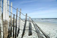 É um tipo da praia do dia Foto de Stock Royalty Free