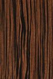 Ébano (textura de madera) Foto de archivo libre de regalías
