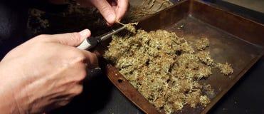 Ébarbage de la médecine médicale de cannabis Image libre de droits