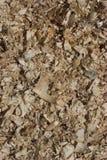Ébrèchements en bois Image stock