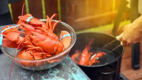 Ébullition de homard dans l'arrière-cour dans l'été photographie stock libre de droits