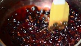 Ébullitions râpées fraîches de cassis dans une casserole homemade clips vidéos