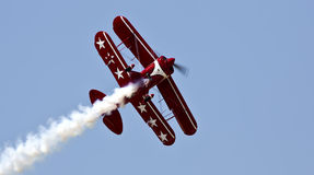 Écarlate Rose Smoky Flight Photos stock