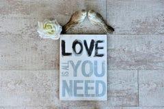 Écartez l'amour et la paix autour du monde sur le Saint Valentin et le Noël Images libres de droits