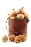 Échalotes dans un émail brun faisant cuire le pot Photographie stock libre de droits