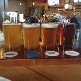Échantillon de bière Image stock