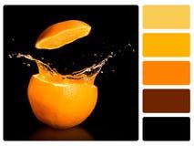 Échantillon de palette de couleur. photographie stock libre de droits