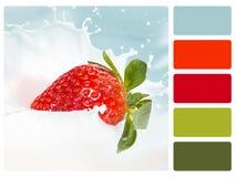 Échantillon de palette de couleur photographie stock