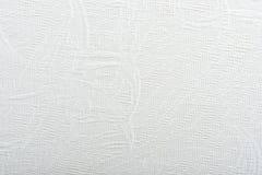 Échantillon de texture des tissus pour des abat-jour Photographie stock libre de droits