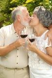 Échantillon de vin à l'extérieur Photographie stock libre de droits