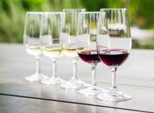 Échantillon de vin à Stellenbosch photographie stock libre de droits