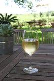 Échantillon de vin dans Roberston, Afrique du Sud Photographie stock libre de droits