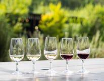 Échantillon de vin en Afrique du Sud Image libre de droits