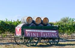 Échantillon de vin de village d'Europa Images stock