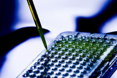 Échantillon médical Tray Pipette Testing Laboratory d'hôpital Photo libre de droits