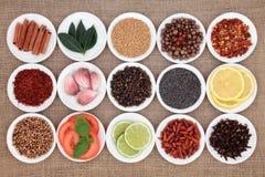 Échantillonneur d'ingrédient de nourriture Photo stock