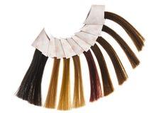 Échantillons de cheveu Photographie stock