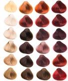 Échantillons de cheveux Photo libre de droits