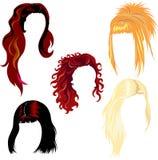 Échantillons de type de cheveu Image libre de droits