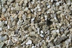 Échantillons minéraux de vermiculite pour la production Photographie stock libre de droits