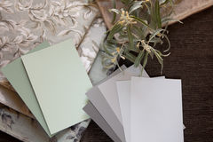 Échantillons vert clair et neutres Photos stock