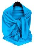 Écharpe bleue Images libres de droits